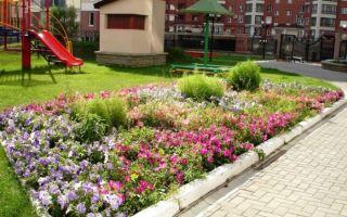 Как озеленить двор МКД