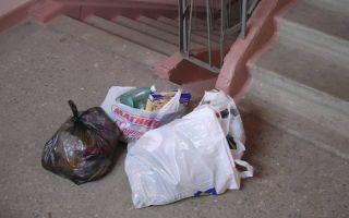 Штрафные санкции за мусор в подъезде