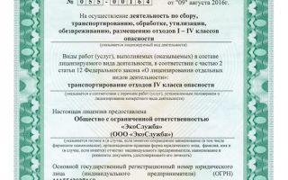 Вывоз мусора: лицензирование