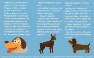 Закон о содержании собак в МКД